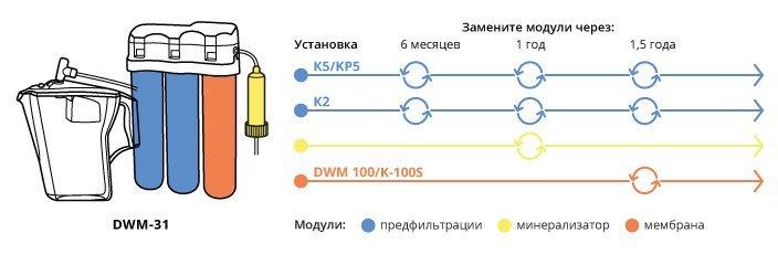 DWM 31